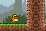 Gravity Duck Game
